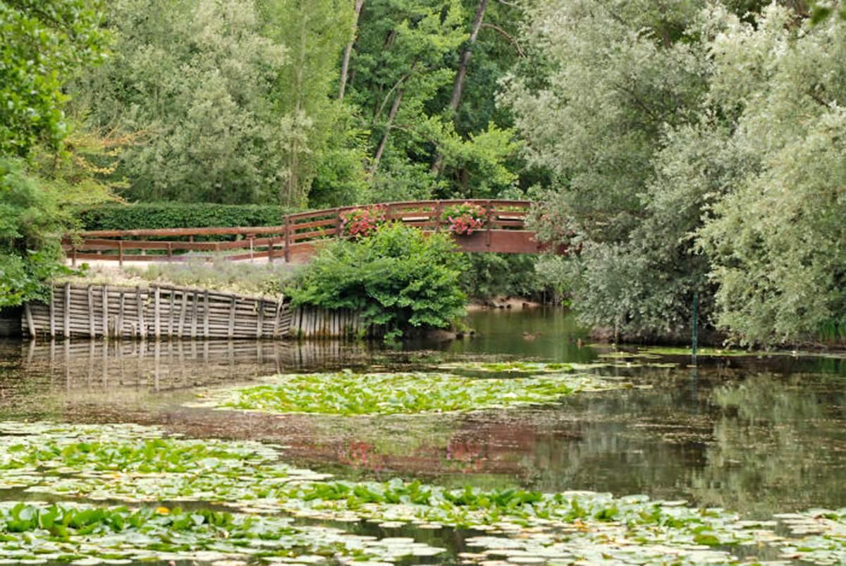 Parc des tangs de fouchy for Piscine de la chapelle saint luc